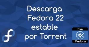 F22_torrent_baner