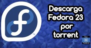 banner_f22_f23_torrent